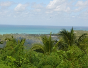 Oceanview over Playa Coson